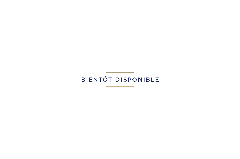 Basket Basic bleu