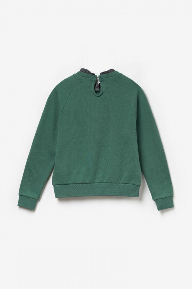 Printed forest green Chapigi sweatshirt