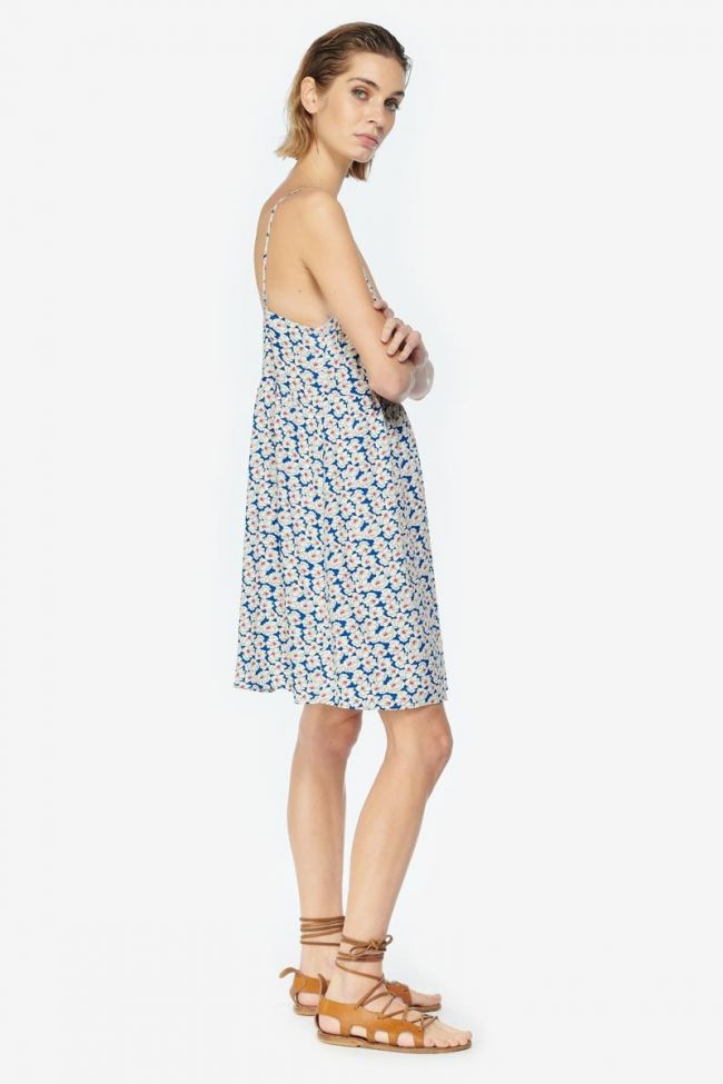 Long Roche dress with a blue and white floral pattern